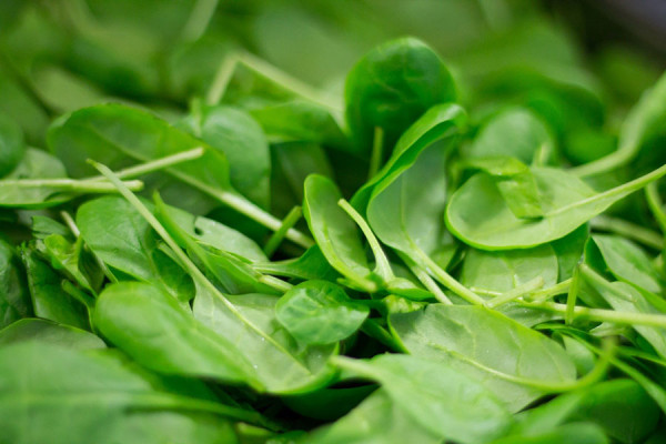spinach-2216967_1920