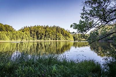 KK_Kesselsee-im-NSG-Eggstaett-Hemhofer-Seenplatte-C-Chiemsee-Alpenland-Tourismus